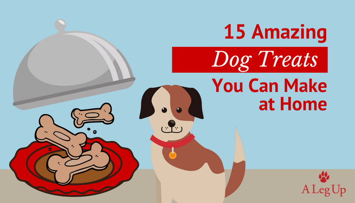 15 Amazing Dog Treats You Can Make at Home