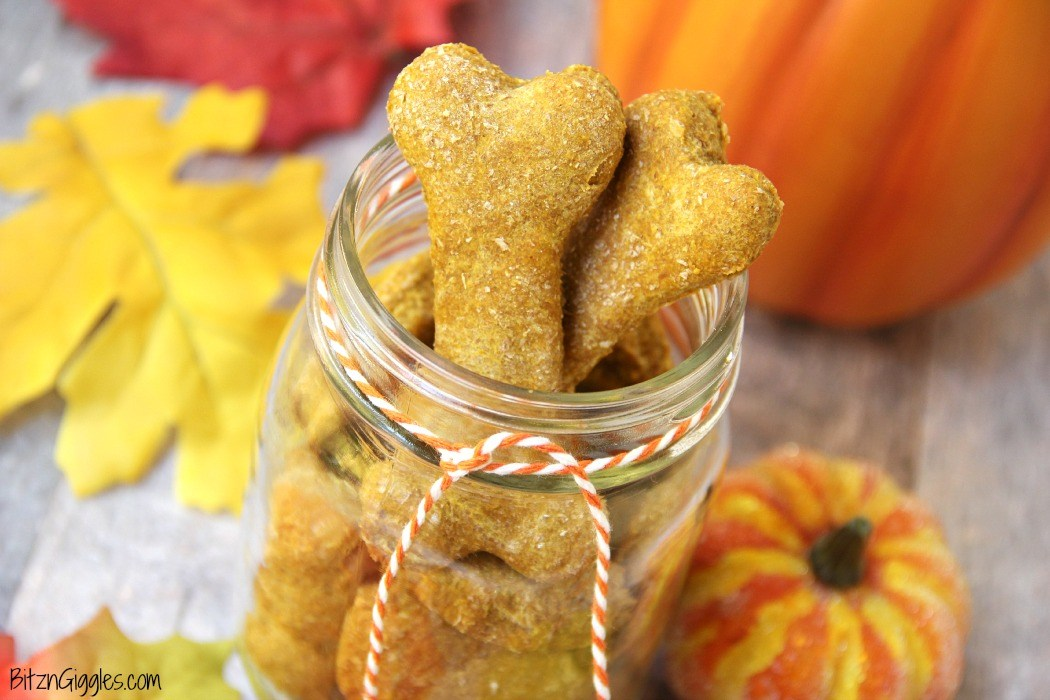 15 amazing dog treats you can make at home blog posts for Desserts you can make with peanut butter