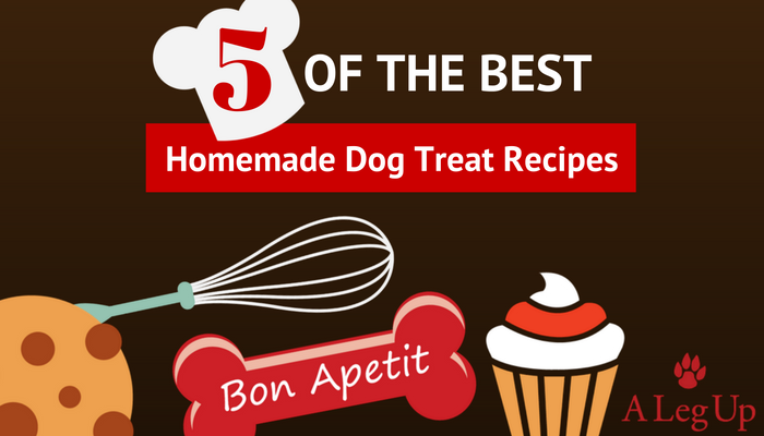 The_Best_Dog_Treat_Recipes